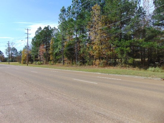 Lots and Land - Collierville, TN (photo 3)