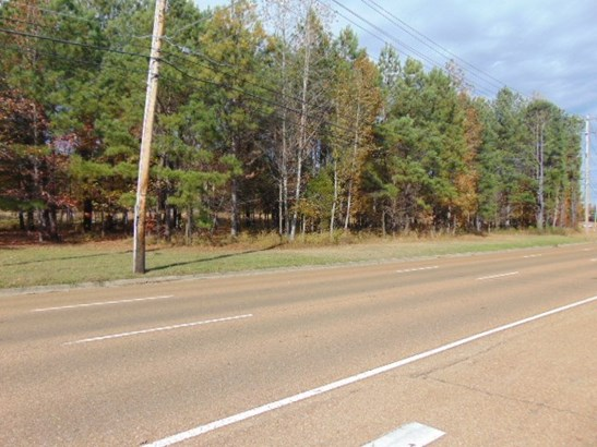 Lots and Land - Collierville, TN (photo 4)