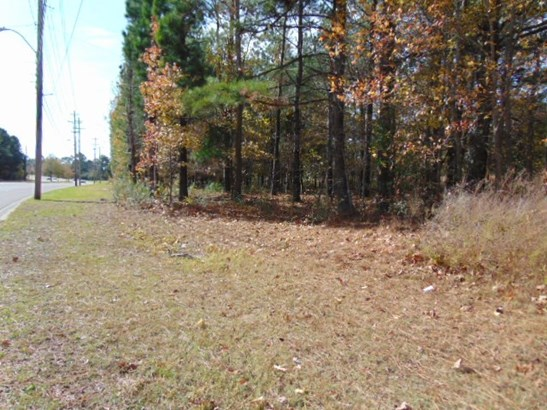 Lots and Land - Collierville, TN (photo 5)