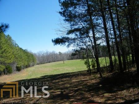 Lots and Land - Covington, GA (photo 1)
