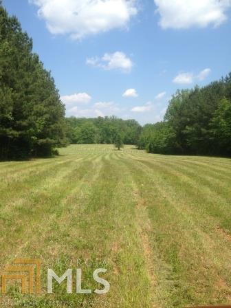 Lots and Land - Covington, GA (photo 3)