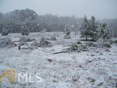 Lots and Land - Covington, GA (photo 4)