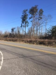 Lots and Land - Ider, AL (photo 2)