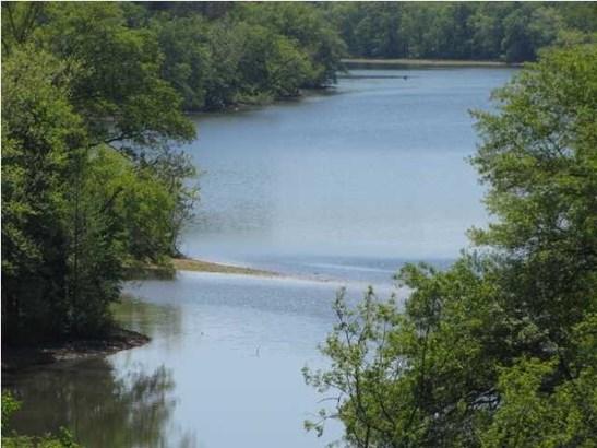 Lots and Land - Calhoun, TN (photo 3)