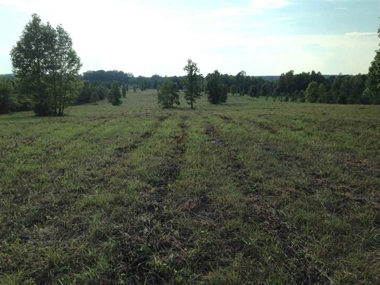 Lots and Land - Oldfort, TN (photo 3)