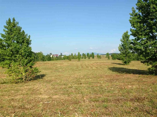 Lots and Land - Oldfort, TN (photo 4)