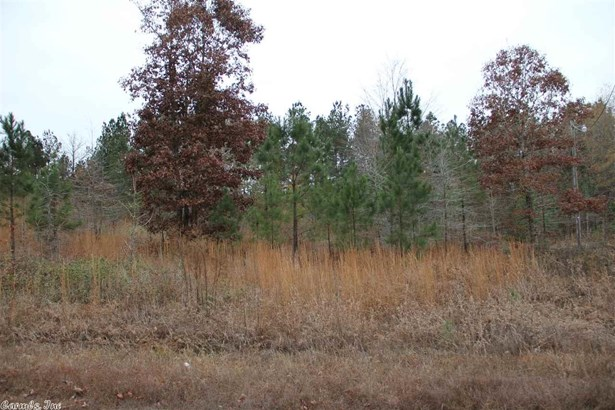 Lots and Land - Alexander, AR (photo 3)