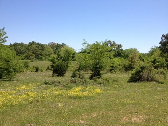 Lots and Land - Rossville, TN (photo 4)