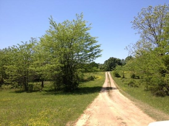 Lots and Land - Rossville, TN (photo 5)