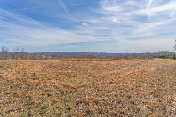 Lots and Land - Ringgold, GA (photo 5)