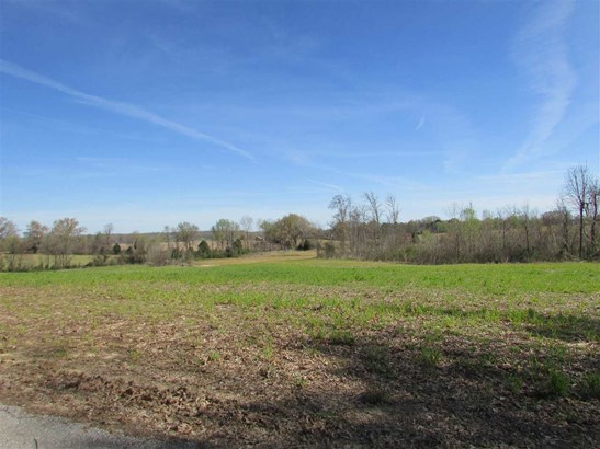 Lots and Land - Trenton, TN (photo 5)