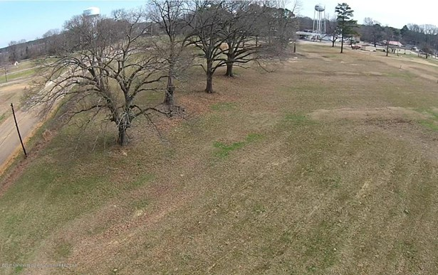 Lots and Land - Horn Lake, MS (photo 3)