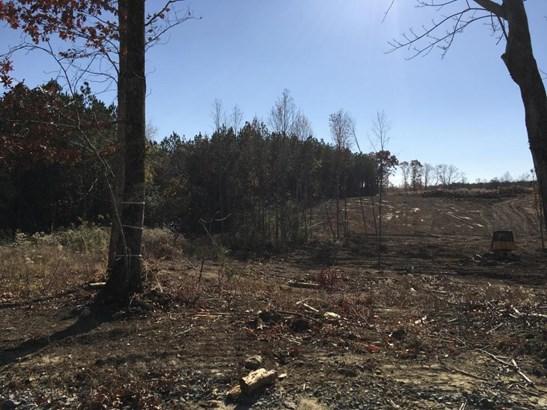 Lots and Land - Dunlap, TN (photo 2)