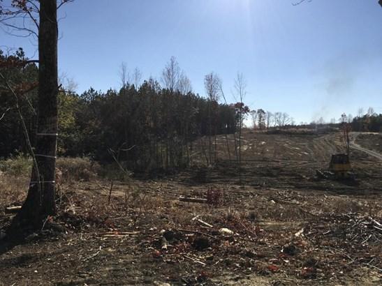Lots and Land - Dunlap, TN (photo 3)
