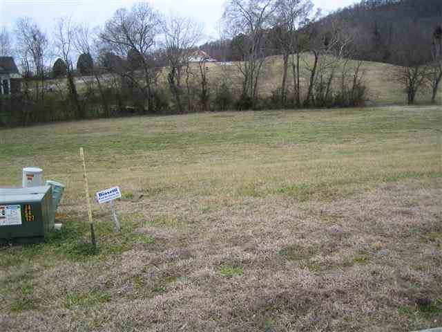 Lots and Land - Mooresburg, TN (photo 4)