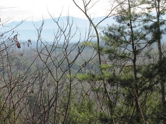 Lots and Land - Tellico Plains, TN (photo 5)