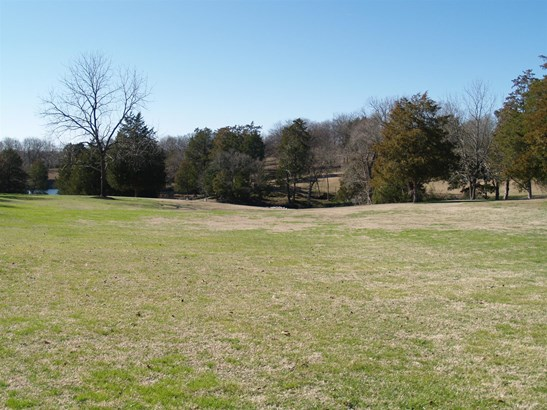 Lots and Land - Gallatin, TN (photo 4)