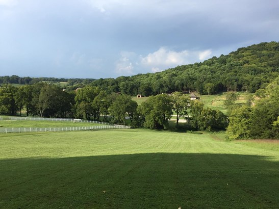 Lots and Land - Eagleville, TN (photo 2)