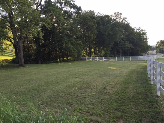 Lots and Land - Eagleville, TN (photo 4)