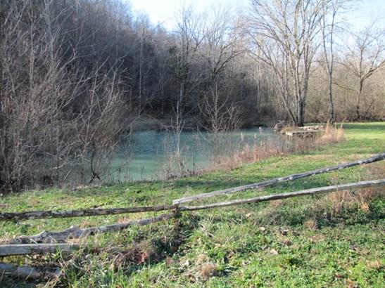 Lots and Land - Tellico Plains, TN (photo 3)