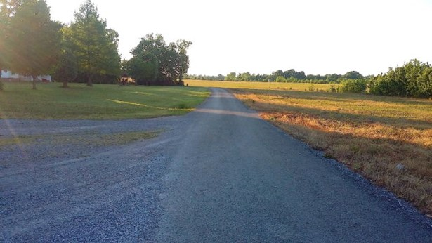 Lots and Land - SMITHVILLE, TN (photo 3)