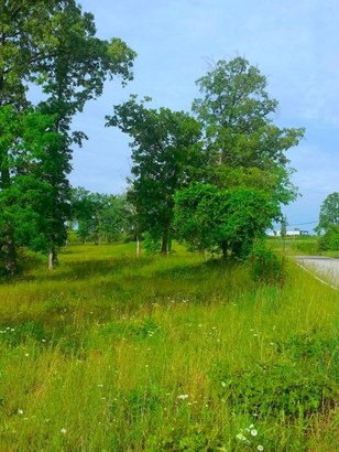 Lots and Land - Spencer, TN (photo 3)