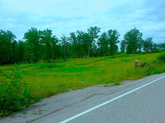 Lots and Land - Spencer, TN (photo 4)
