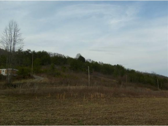 Lots and Land - Tazewell, TN (photo 4)