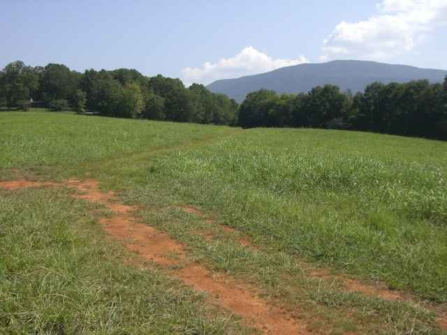 Lots and Land - Benton, TN (photo 1)