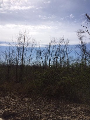 Lots and Land - Blue Mountain, MS (photo 4)