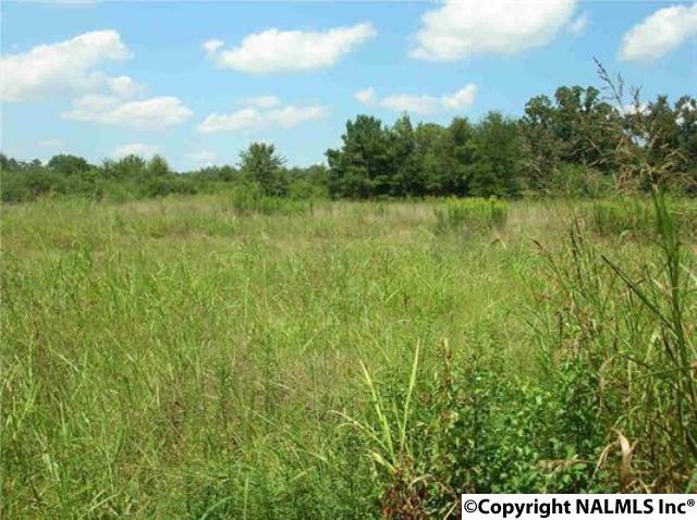 Lots and Land - JASPER, AL (photo 1)