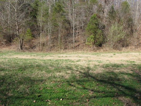 Lots and Land - White Bluff, TN (photo 3)