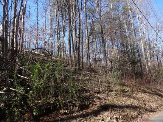 Lots and Land - Clinton, TN (photo 1)