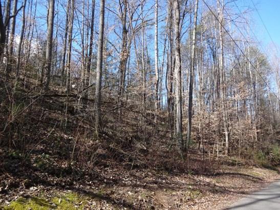 Lots and Land - Clinton, TN (photo 2)
