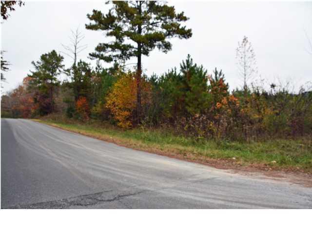Lots and Land - Ocoee, TN (photo 3)