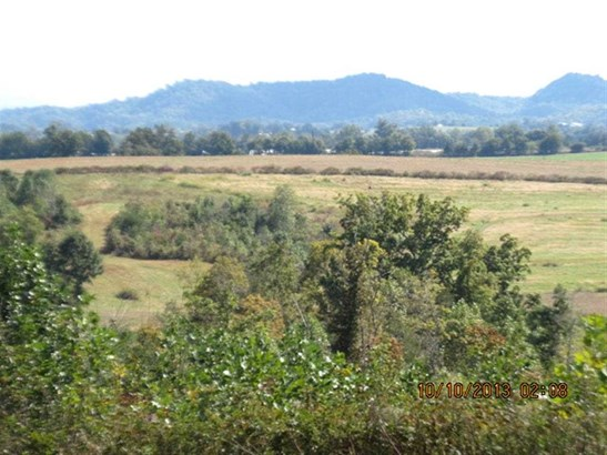 Lots and Land - Englewood, TN (photo 1)