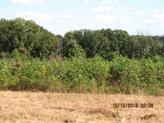 Lots and Land - Englewood, TN (photo 5)