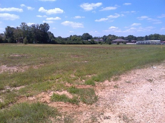 Lots and Land - Parsons, TN (photo 3)