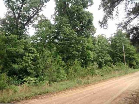 Lots and Land - Paragould, AR (photo 1)