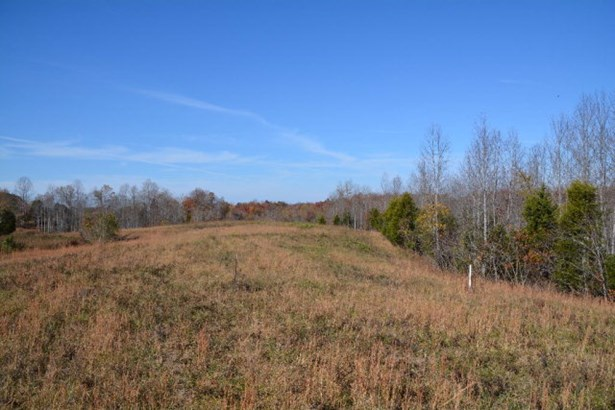 Lots and Land - Hilham, TN (photo 4)