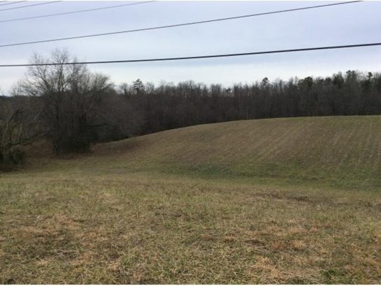 Lots and Land - Greeneville, TN (photo 2)