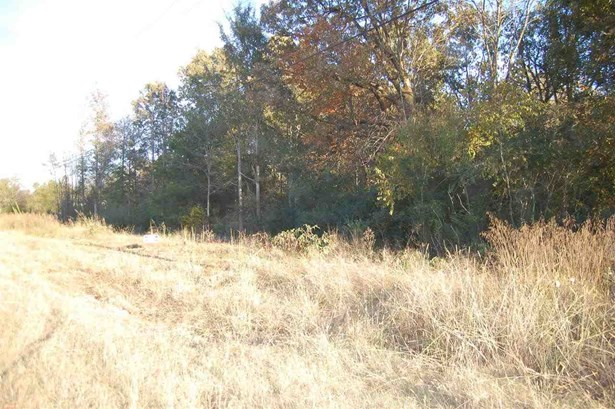 Lots and Land - Rossville, TN (photo 2)