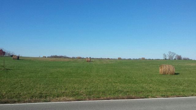 Lots and Land - Walling, TN (photo 1)