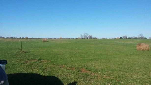 Lots and Land - Walling, TN (photo 3)