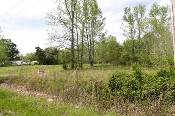 Lots and Land - Rossville, TN (photo 3)