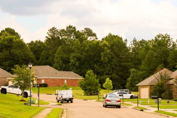 Lots and Land - Pearl, MS (photo 2)