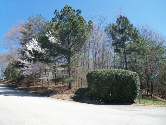 Lots and Land - Chattanooga, TN (photo 1)