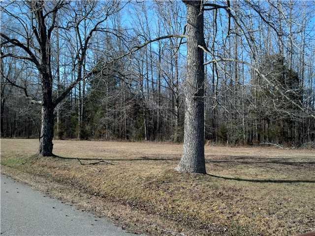 Lots and Land - Pinson, TN (photo 1)