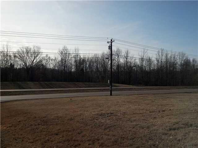 Lots and Land - Pinson, TN (photo 5)