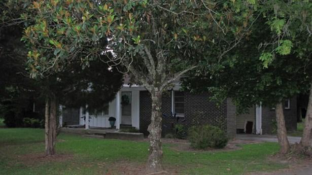 Residential/Single Family - Hamilton, MS (photo 5)
